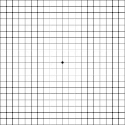 Click Here to Download Your Amsler Grid
